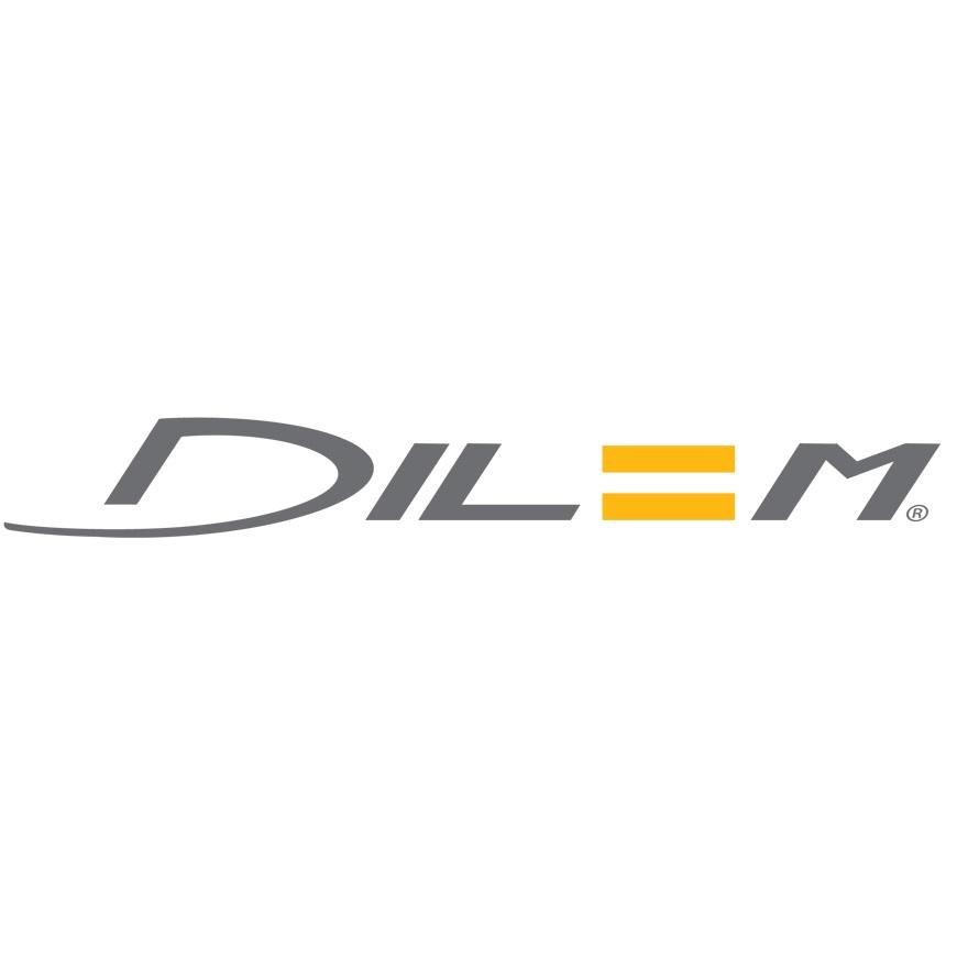 2-logo Dilem